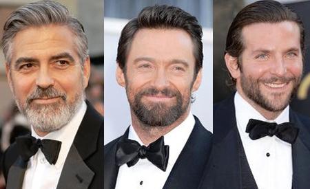 Gala Premios Oscar 2013