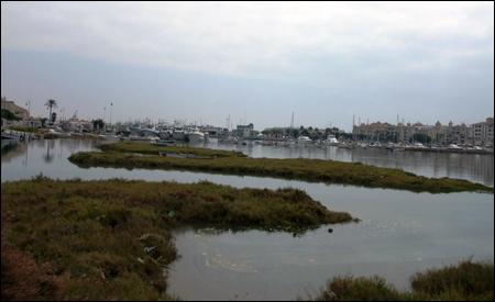Marina de Isla Canela